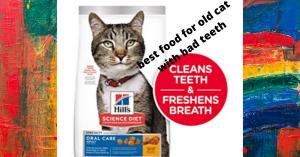 Bеѕt cat Food fоr Older Cаts with bad teeth